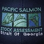 Pacific Salmon Stock Enhancement